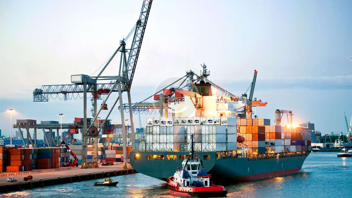 Transportation Management Solutions for Large Companies